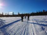 Välijoen (Vuontis- ja Saivojärvi) vierusjängällä 4.3.2019